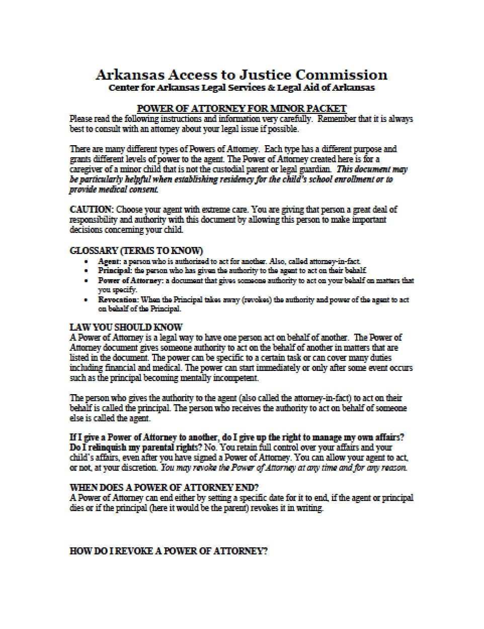 medical power of attorney template for child